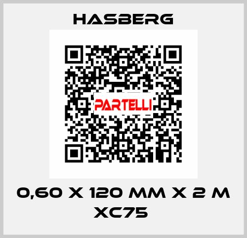 Hasberg-0,60 X 120 MM X 2 M XC75  price