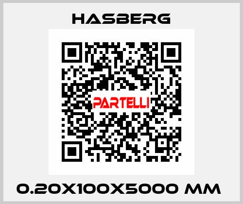 Hasberg-0.20X100X5000 MM  price